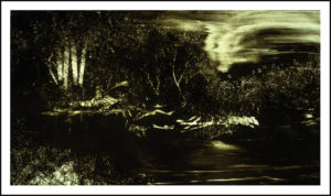 Class: Monotypes and Monoprints w/ Bill DeMott @ Art Assosciation of Oswego | Oswego | New York | United States